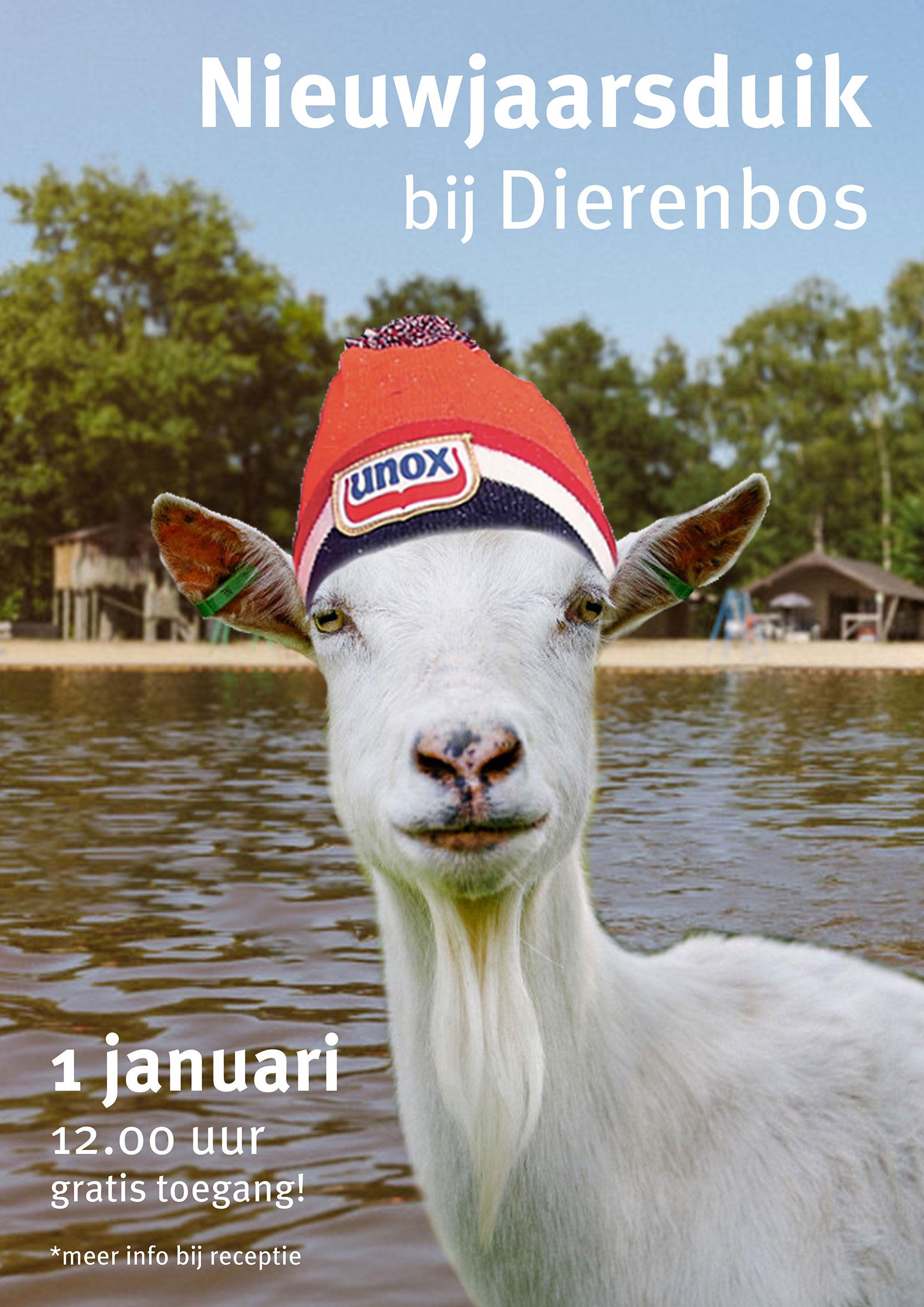 nieuwjaarsduik-poster-vakantiepark-dierenbos.jpg